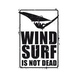 PLAQUE WINDSURF IS NOT DEAD