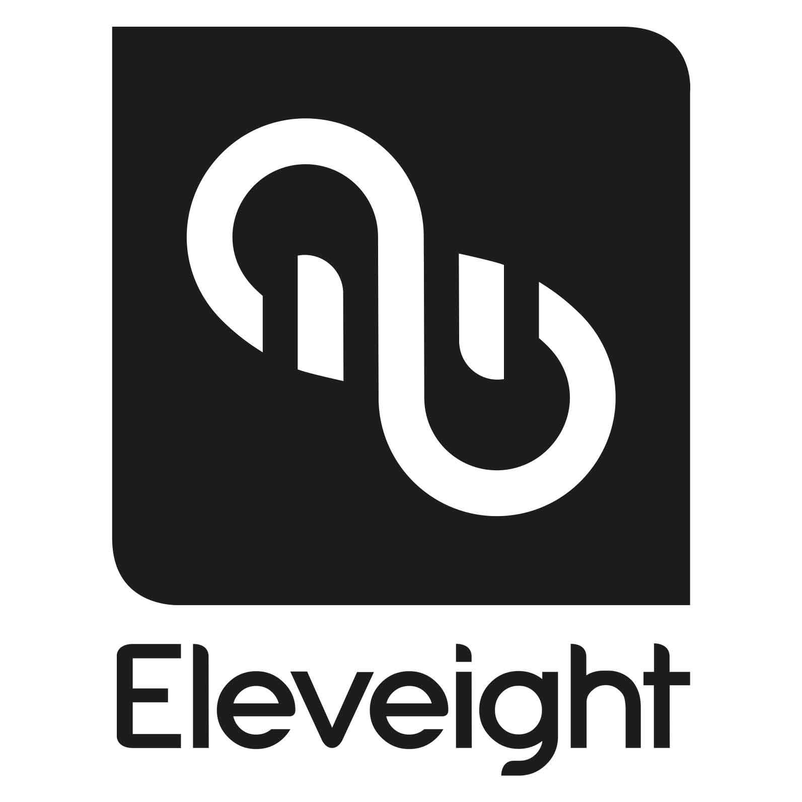 Eleveight kites